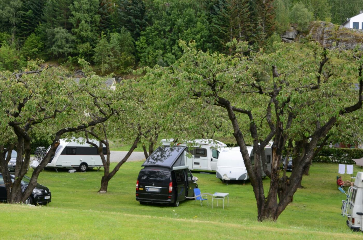 Camping unter Kirschbäumen bei Lofthus
