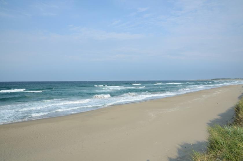 Strand bei Ogna