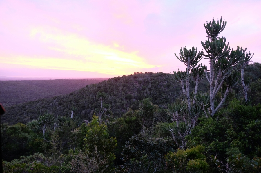 Abendlicher Ausblick aus dem Chalet der Kariega Private Game Reserve