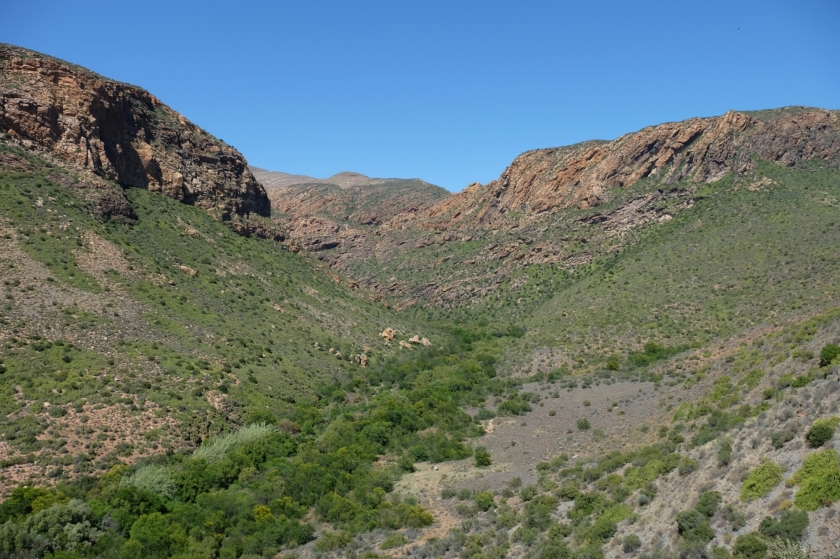 Aussicht von der Route 62 (Klein Karoo)