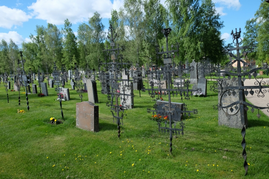Lebensbäume auf dem Friedhof von Ekshärad