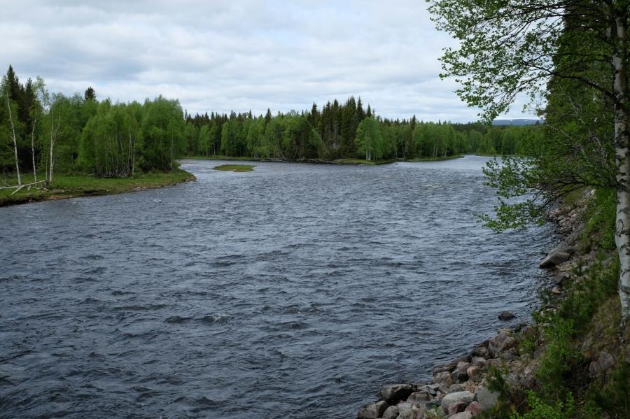Västerdalälv (Fluss)