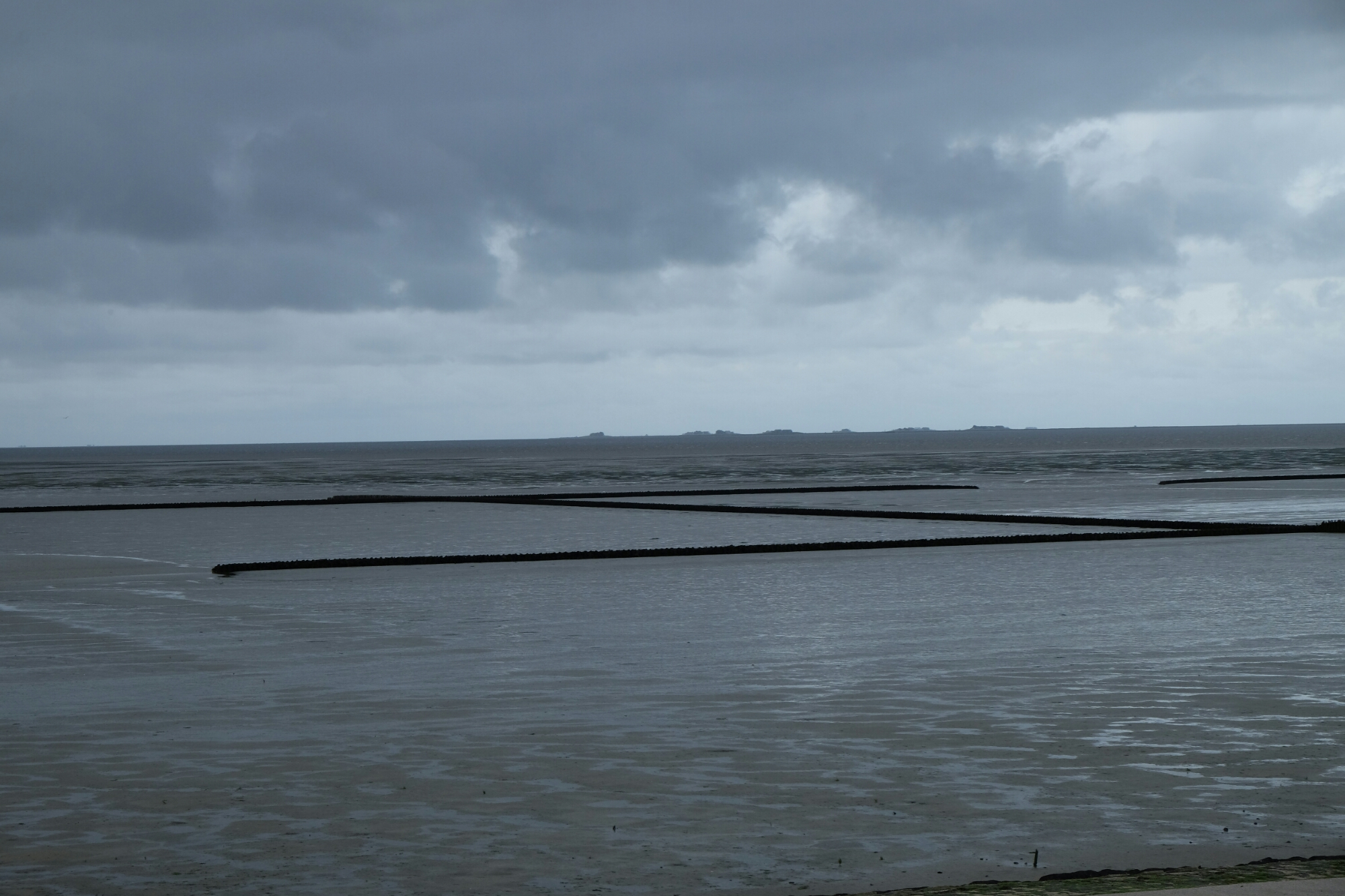 Ausblick am Hauke-Haien-Koog