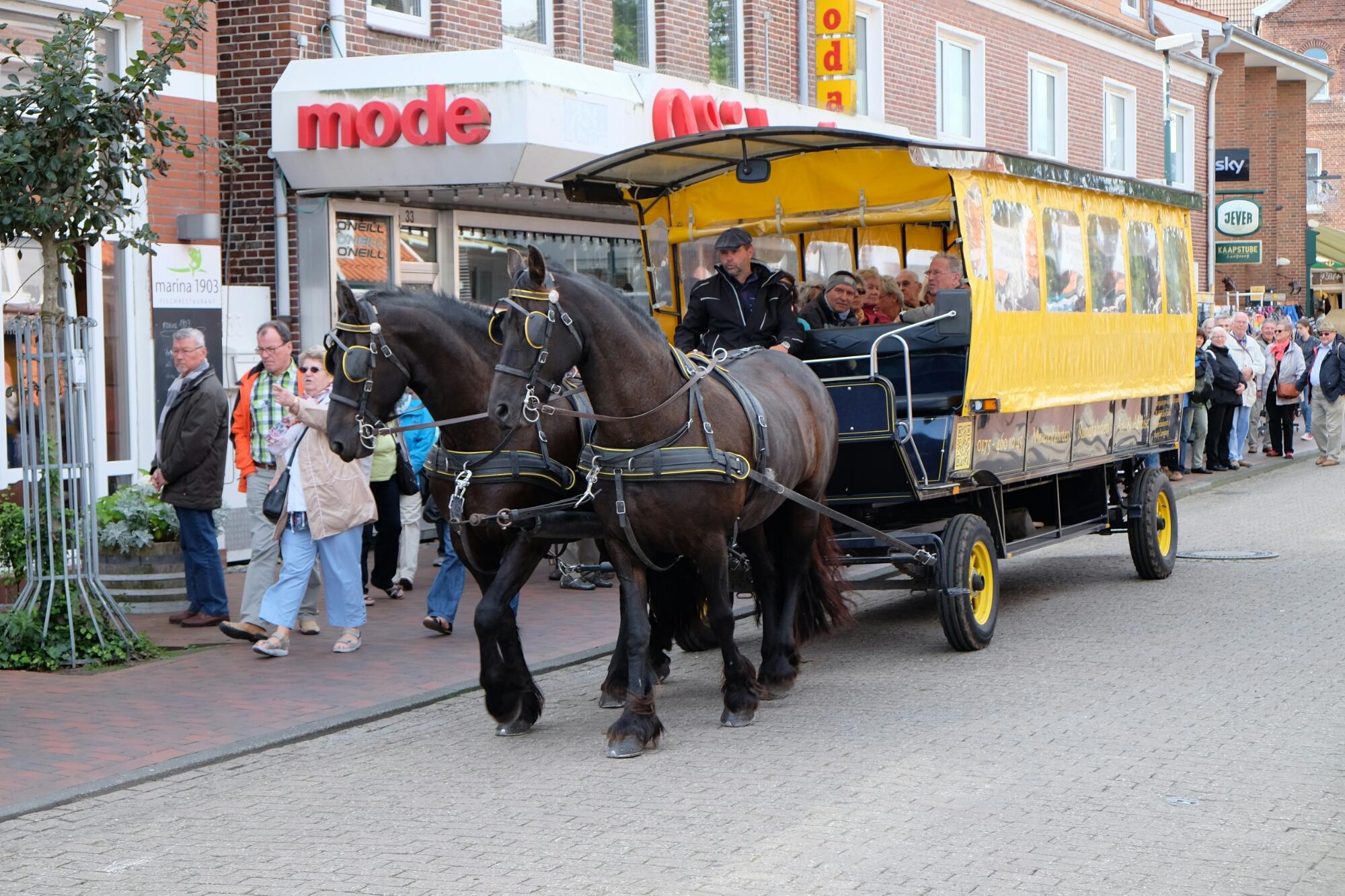 Pferdewagen auf Langeoog