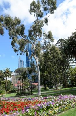 Perth Impression