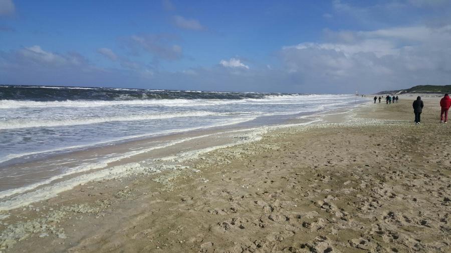 Stürmischer Wind an Westerlands Strand