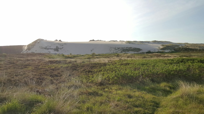 Grosse Wanderdüne im Listland