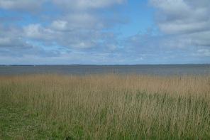 Blick vom Fuss des Morsum-Kliff Richtung Listland