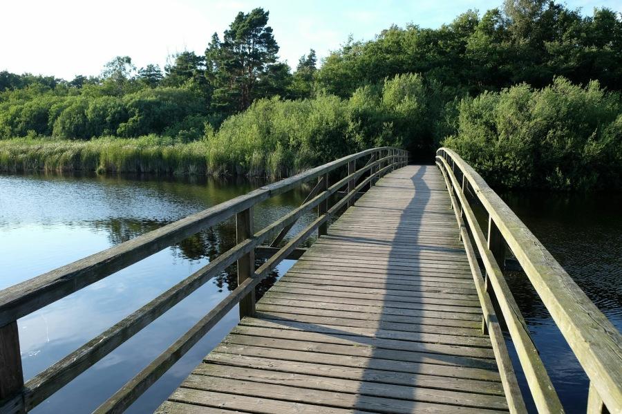 Brücke über den Prerowstrom