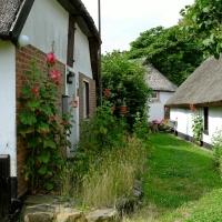 Häuser im Heringsdorf Vitt