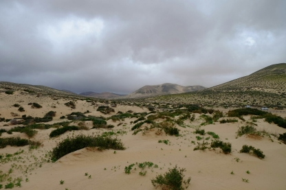 Dünen von Risco del Paso
