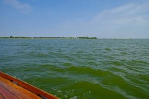 Aussicht vom Zeesboot auf die Boddenküste von Wustrow