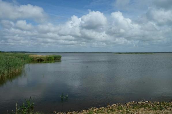 Filsø - Mellemsøen