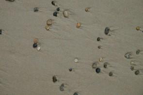 Sand und Steine bei der Henne Mølle Å Mündung