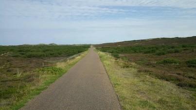 Fahrradweg beim Sylter Klappholtal