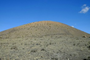 Flechten am Südwesthang der Montaña Colorada