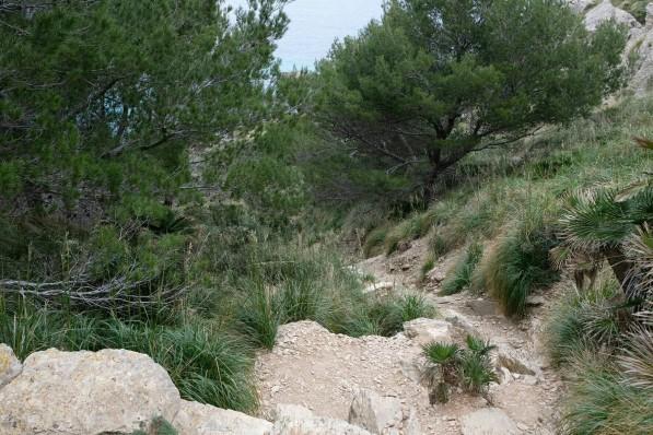 Pfad zur Cala Muerta