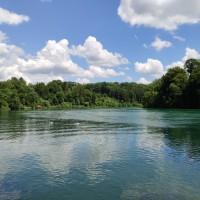 Rhein bei Rheinau