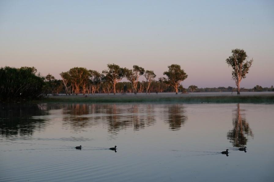 Yellow Water Morgenstimmung