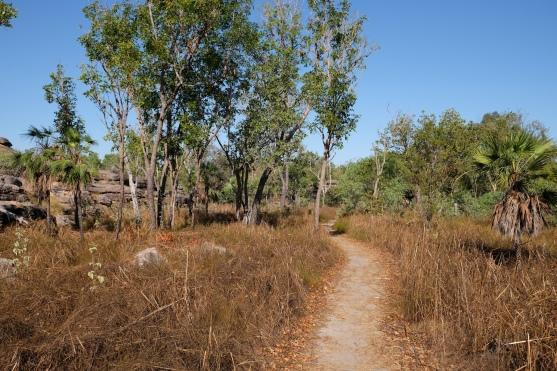 Merl Campground Scenic Walk (Kakadu NP)