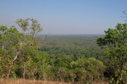 Wangi Falls Aussicht (Litchfield NP)