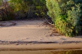 Spuren am Ufer der Katherine Gorge