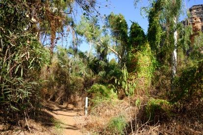 Wanderweg der Bandilgan Gorge