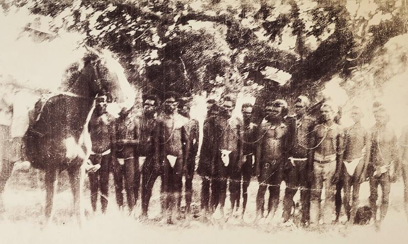 Historisches Bild beim Boab Prison Tree