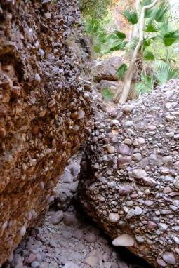 Weg zur Mini Palms Gorge (Purnululu NP)