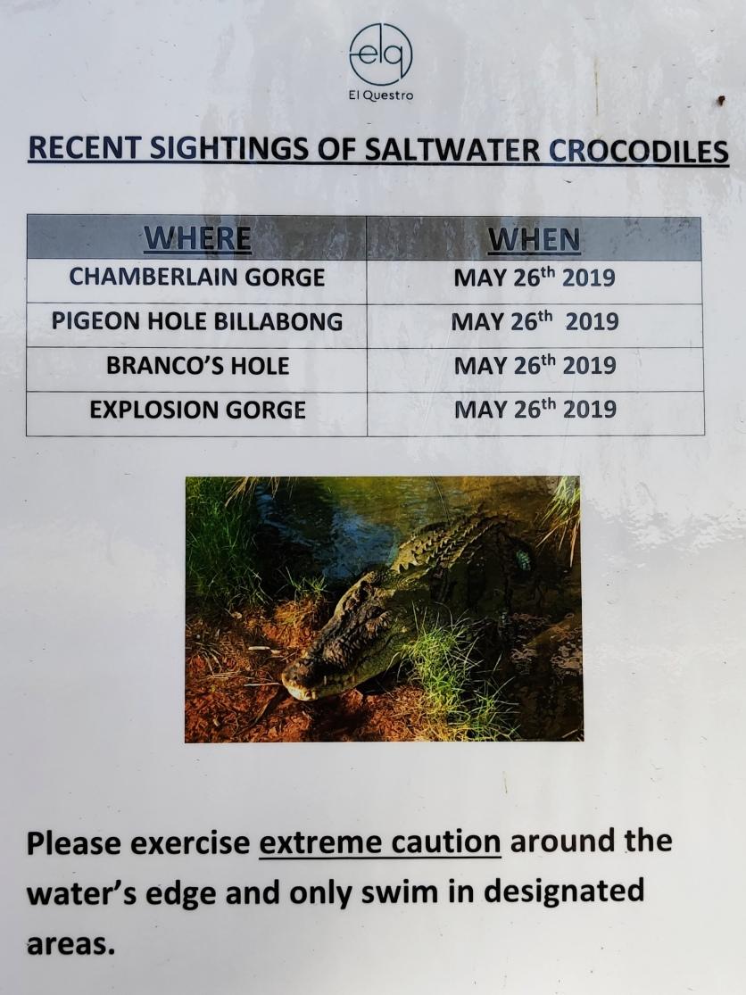 Sichtungen von Salzwasserkrokodilen (El Questro)