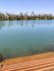 Deep Reach Pool (Millstream Chichester NP)