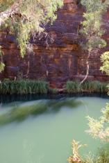 Circular Pool (Dales Gorge)