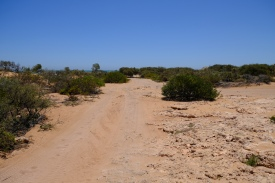 Ningaloo - Yardie Creek Road