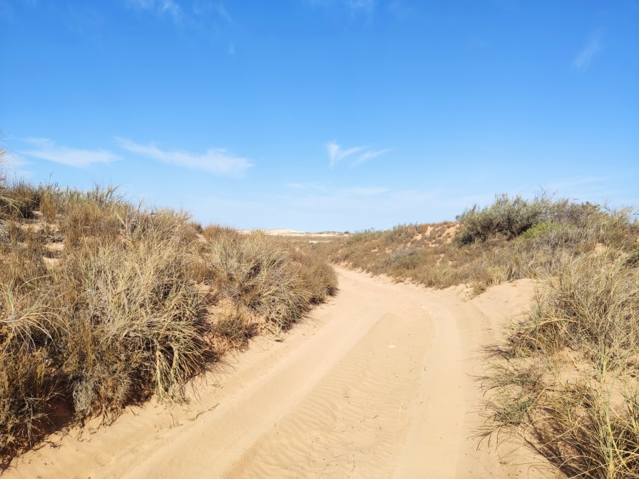 Piste zum Strand (Jurabi Coastal Park)