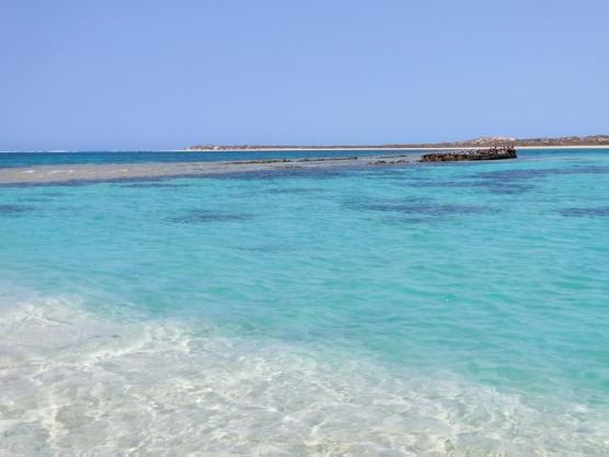 Shark Nursery (Coral Bay)
