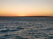 Abendstimmung in Shark Bay