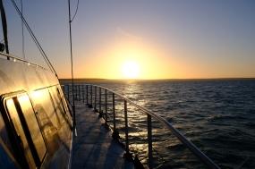 Sonnenuntergang auf der Evening Cruise