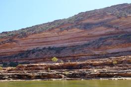 Felswand am Murchison River