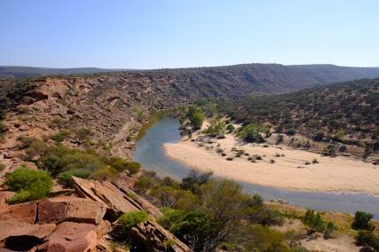 Schlaufe des Murchison River (Kalbarri NP)
