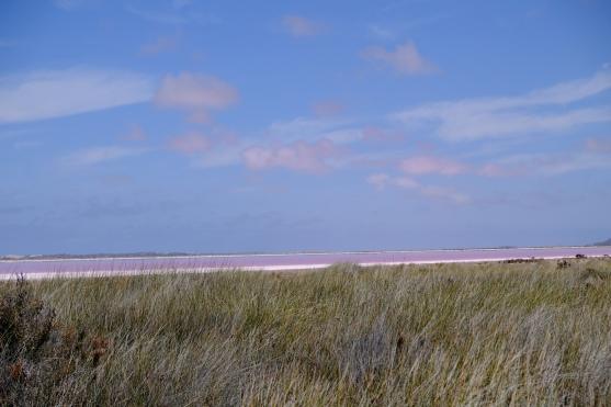Pink Lake (Hutt Lagoon)