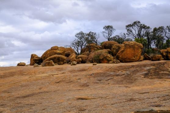 Felsen auf Wave Rock