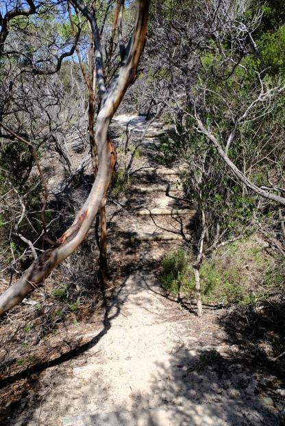 Hamersley Beach Walk Trail