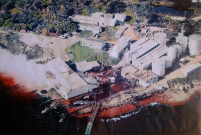 Albanys historische Walfangstation (historisches Bild)