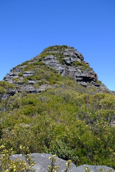 Felsenkastell des Mount Hassel