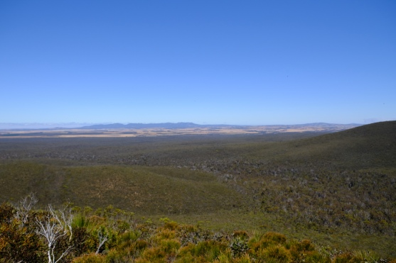 Ausblick vom Mount Hassel