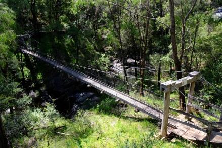 Hängebrücke über Beedelup Falls