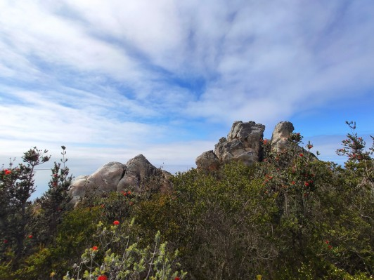 Gipfel des East Mount Barren