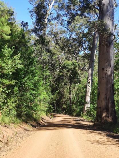 Heartbreak-Trail