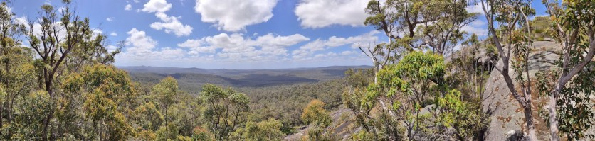 Panorama beim Mt Frankland Wilderness Lookout