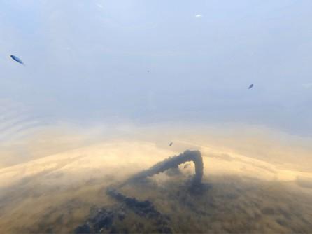 Sandboden am Ende des Busselton Jetty